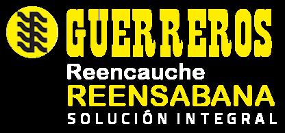 Grupo Guerrero Gonzalez